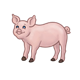 Standing Pink Pig with brown hooves