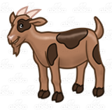 Light Brown Goat