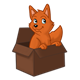 Orange Fox standing in a box