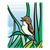 Brown Songbird Color PNG
