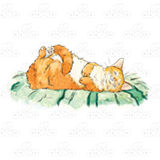 Orange Cat Sleeping
