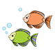 Orange and Green Fish with bubbles