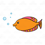 Pink and Orange Fish