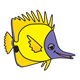 Yellow Fish with purple face, without bubbles