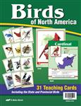 Birds of North America Teaching Cards Thumbnail