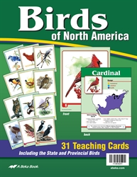 Birds of North America Teaching Cards