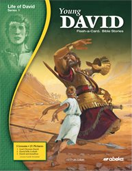 Young David Flash-a-Card Bible Stories—New