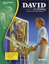 David in Hiding Flash-a-Card Bible Stories—New