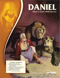 Daniel Flash-a-Card Bible Stories—New