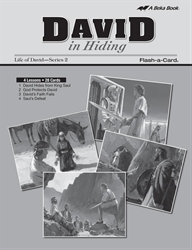David in Hiding Lesson Guide