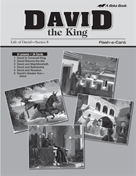 David the King Lesson Guide