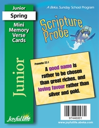 Scripture Probe Junior Mini Memory Verse Cards