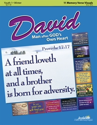David: A Man After God's Own Heart Youth 1 Verse Visuals